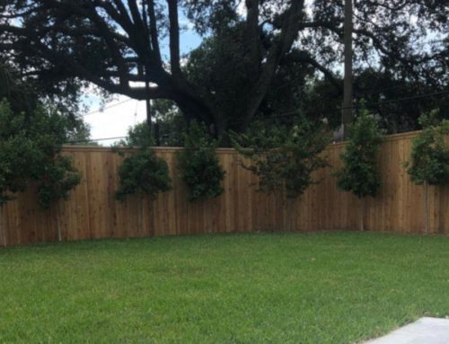 Fence Trends 2019