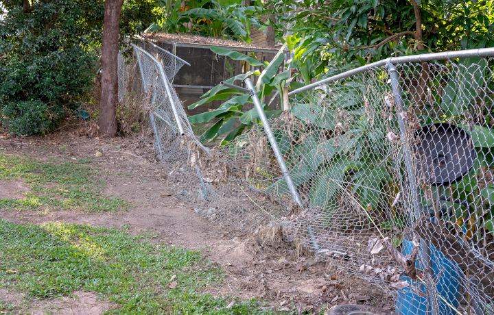 Caring for your fence